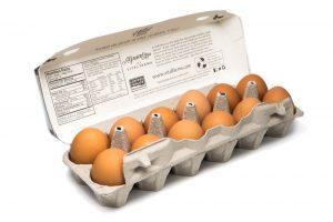 زنجیره تامین تخم مرغ